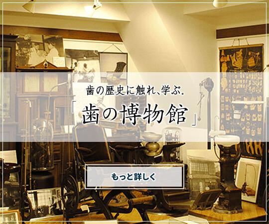 歯の歴史に触れ、学ぶ。「歯の博物館」